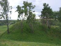 http://www.zarechie-village.ru/images/news/news_010.jpg